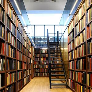 Библиотеки Биробиджана